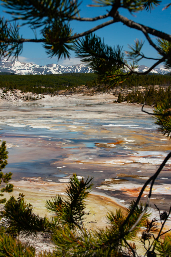 Geyser Basin and Mountains