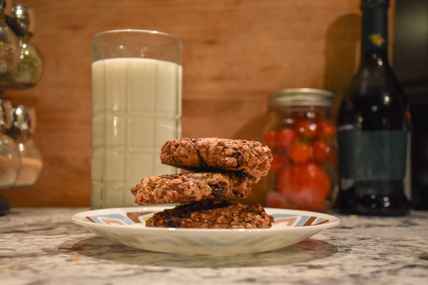 Chocolate Oatmeal Raisin Cookie Recipe for Fall Activities and Halloween