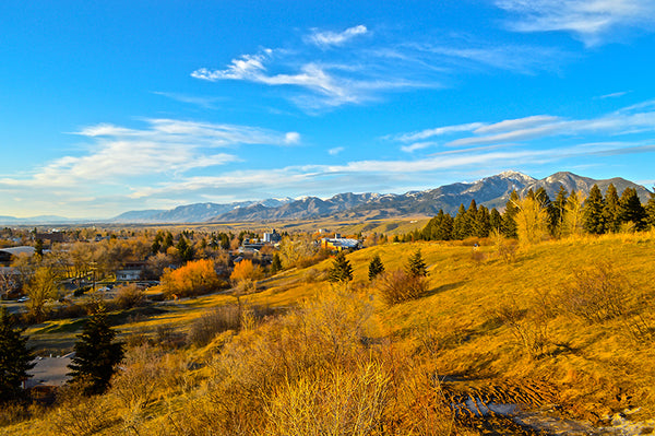 Peet's Hill in Bozeman