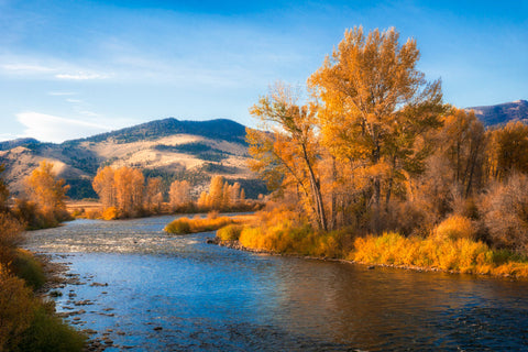 Wisdom Montana. Beautiful Fall Foliage in Southwest Montana