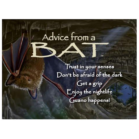 Advice From a Bat Magnet by Your True Nature