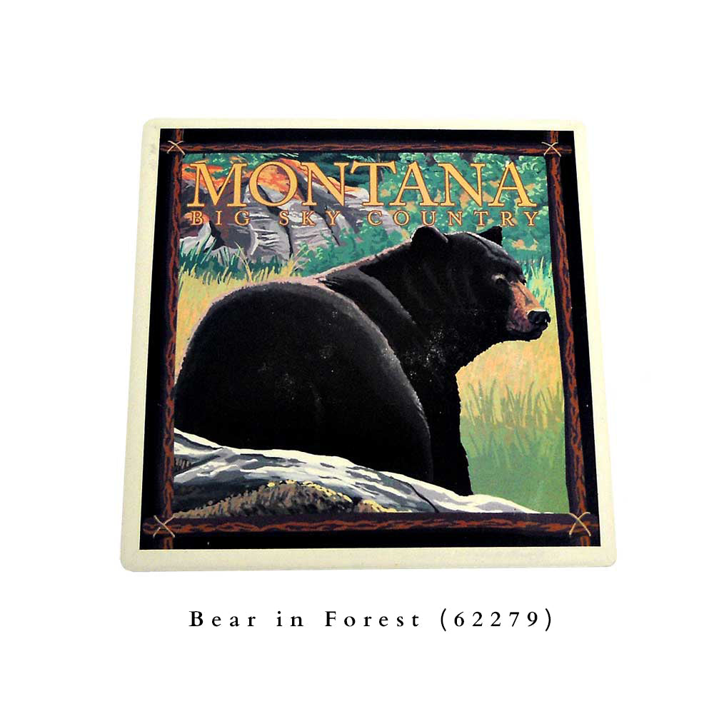 Bear in Forest Big Sky Country Montana Coaster