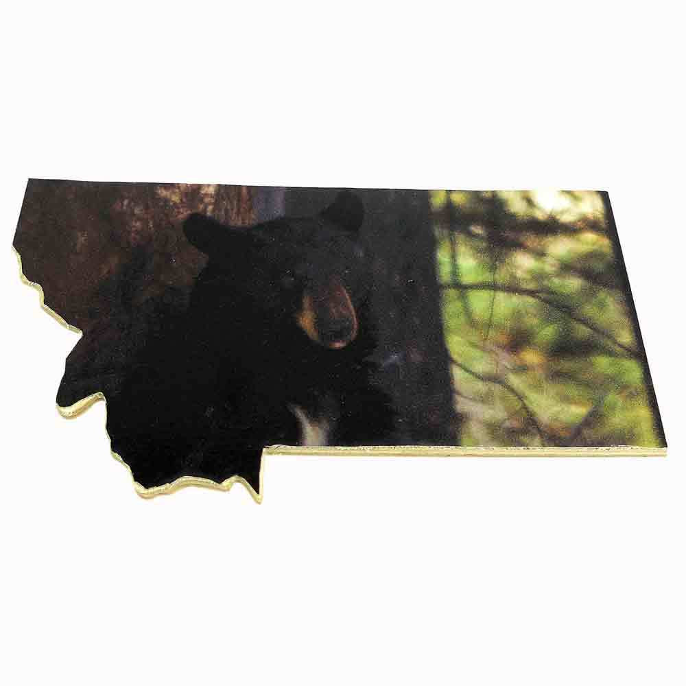 Black Bear Montana Magnet