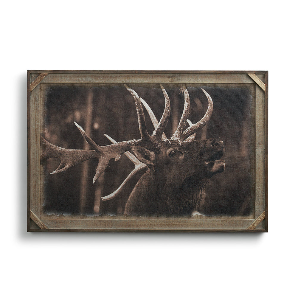 Bulle Elk Barnwood Gallery Art by Big Sky Carvers