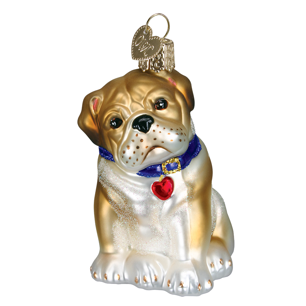 Bull Pup Ornament by Old World Christmas