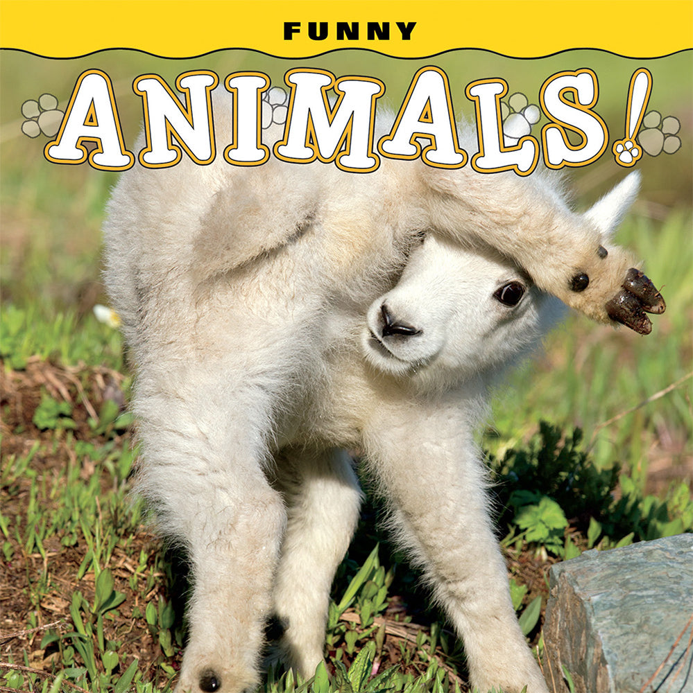 Funny Animals! by Farcountry Press featuring Steve Hinch, Janet Horton, Lisa Husar, Mike Husar, Don Johnston, Donald M. Jones, Brett Swain at Montana Gift Corral