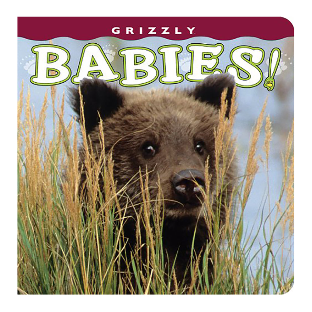 Grizzly Babies by Wendy Shattil and Bob Rozinsky