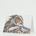 Looking Back Saw Whet Owl Bird Watercolor Greeting Cards by Dean Crouser from Montana Gift Corral