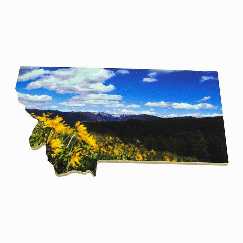 Montana with Wildflowers Magnet