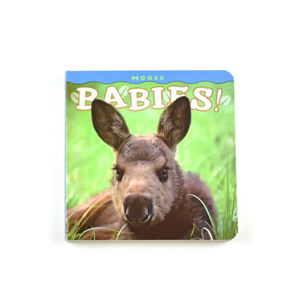 Moose Babies! by Farcounty Press featuring Photographer Henry H. Holdsworth at Montana Gift Corral