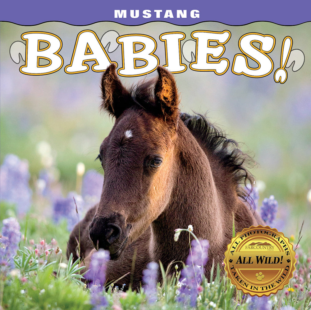 Mustang Babies! by Carol J. Walker from Farcountry Press at Montana Gift Corral