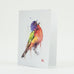 Painted Bunting Bird Watercolor Greeting Cards by Dean Crouser from Montana Gift Corral