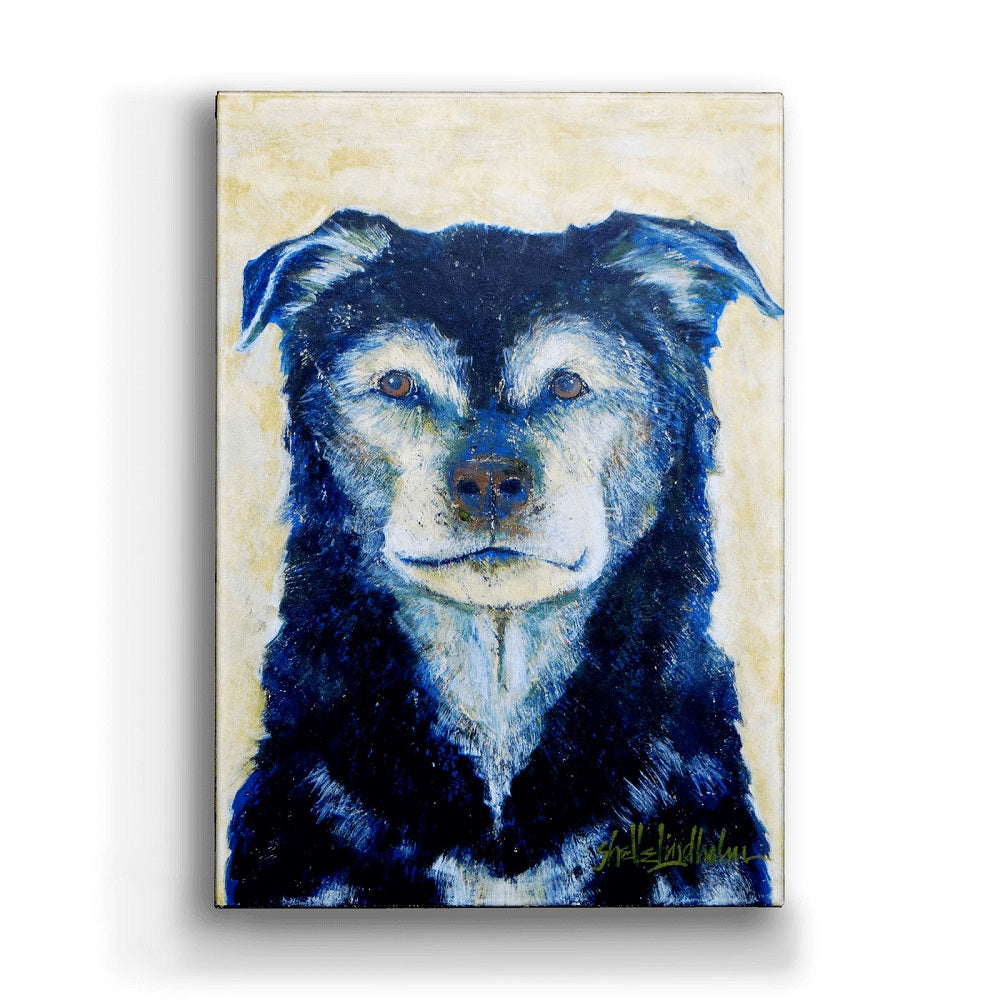 Shelle Lindholm Old Faithful Dog Metal Box Wall Art by Meissenburg Designs