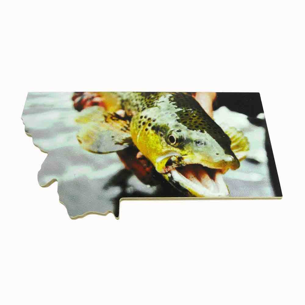 Trout Montana Magnet