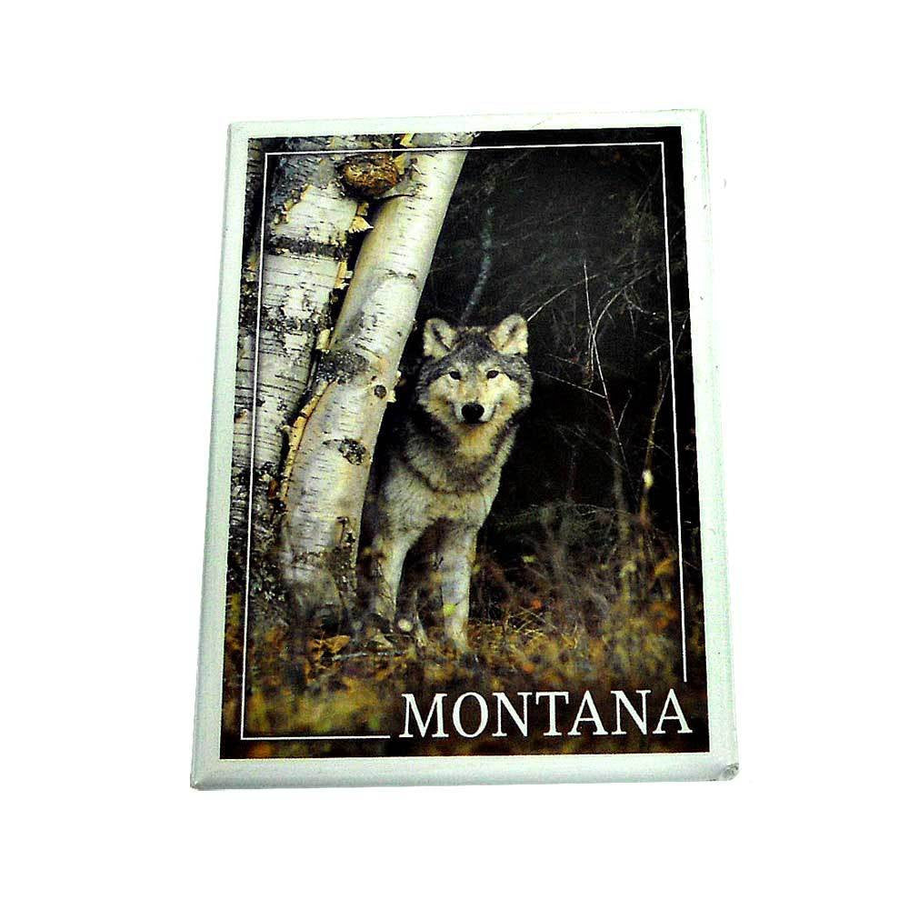 Wolf in Forest Montana Magnet