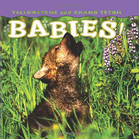 Yellowstone Babies by Wendy Shattil and Bob Rozinski