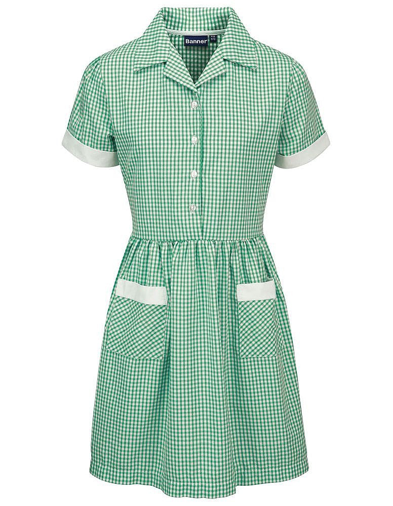 Badbury Park Primary School Gingham Dress