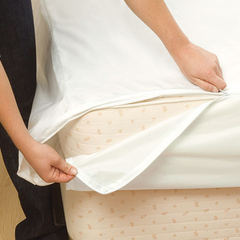 Allergy mattress cover thelowex.com
