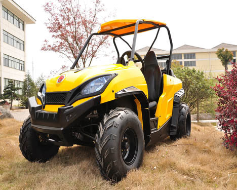 UTV 200 Two Seats Single Cylinder 4-Stroke - PDXMotorSport