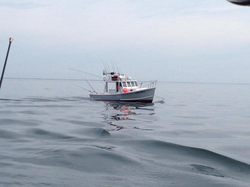 2. Offshore (More than 10 Miles) - Black Hull Charters - Boston and Cape Cod Sport Fishing