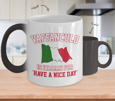 Vaffanculo Color Changing Mug