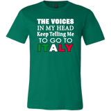 Voices in My Head Shirt