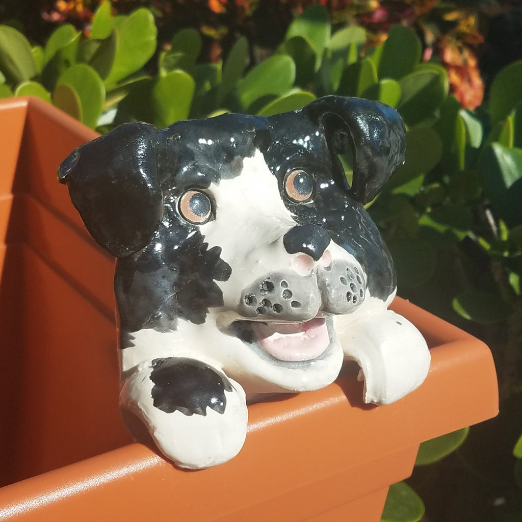 Flower Pot Friend-Black & White Dog