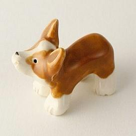 LIttle Guy-Corgi