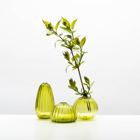 Little Buddies Glass Vases-Olive