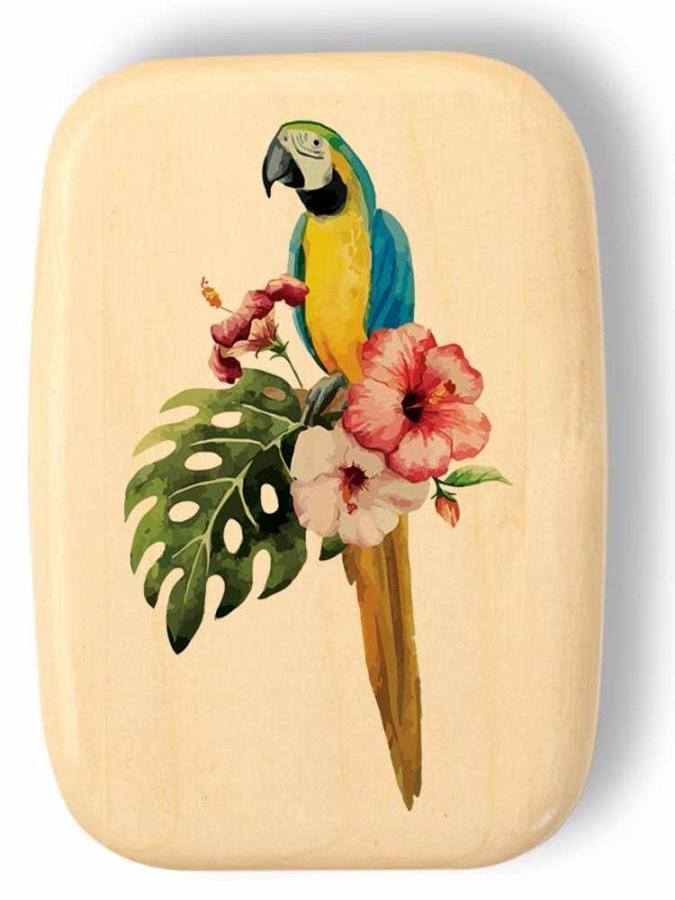 Secret Box-Macaw | Heartwood Creations | Random Acts of Art | Naples Florida