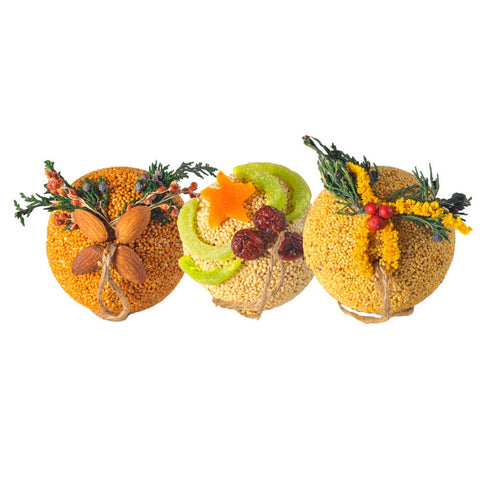 Birdseed & Fruit Ornaments