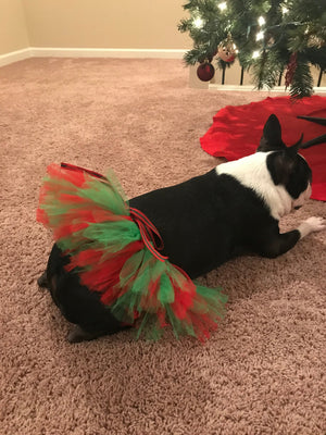 Holiday Pet ( Dog and Cat ) Tutu Skirt with Pom Pom By Tutu Jólí