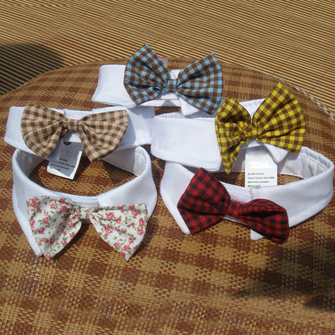 Cats Dog  Bowties