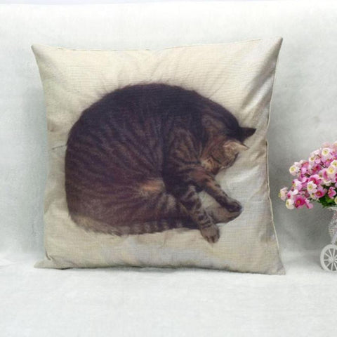 Sleeping cat pillow case