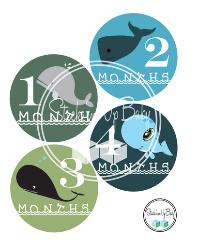 Whales | Monthly Baby Stickers | Stick'em Up Baby™