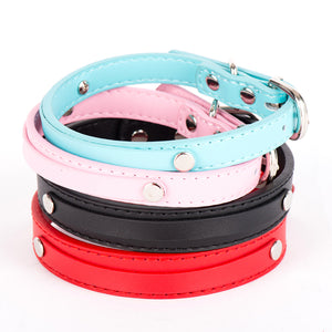 SCOOTER Leather Collar & Leash