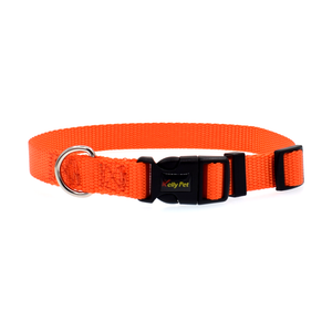 MAX Nylon Collar & Leash