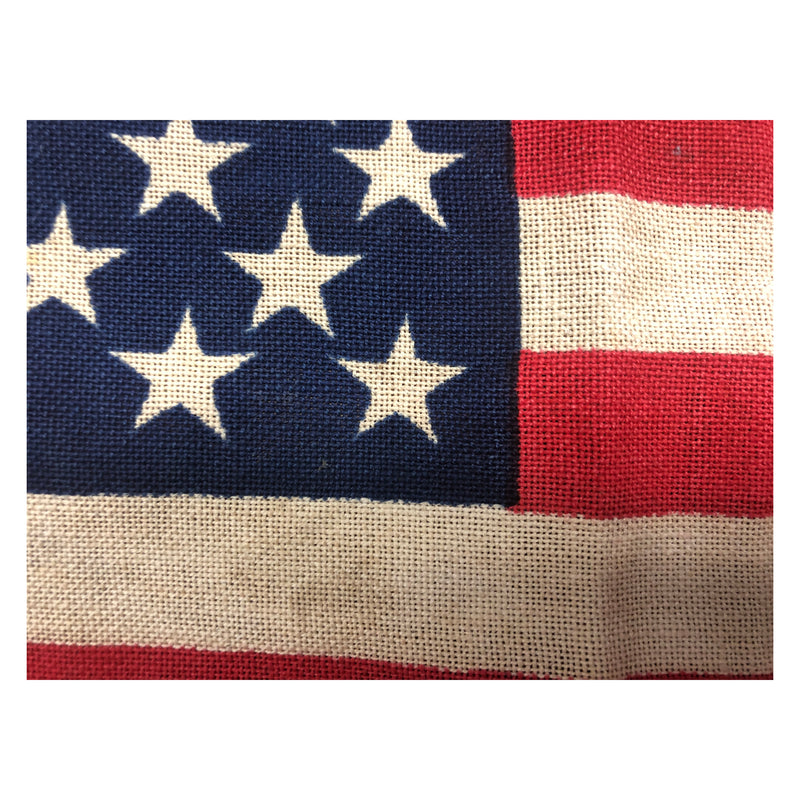 Vintage Small Size 50 Star Flag - Detco Process Bull Dog Bunting