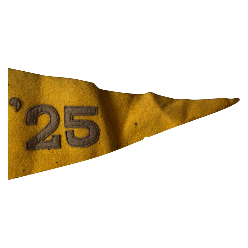 HHS 25 Pennant