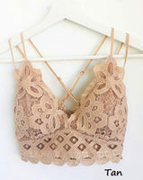XL & XXL Lace Bralette ** 4 COLORS **