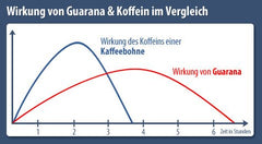 Guarana vs Coffee