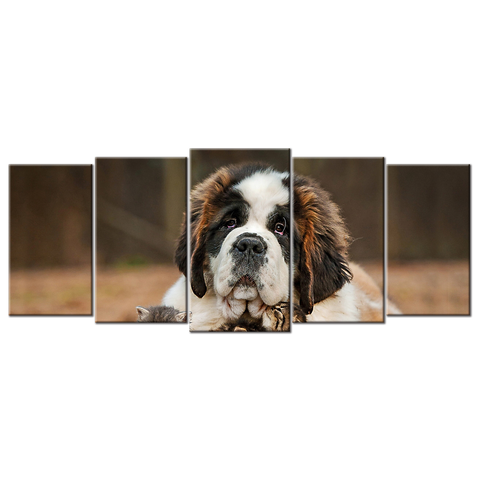 Saint Bernard Dog Kitten Puppy - 5 Panel L