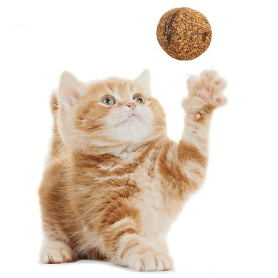 3Pcs Natural Catnip Treat Balls-Cat Toys-FreakyPet