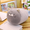 Cute Chubby Cat Plush Stuffed Toy