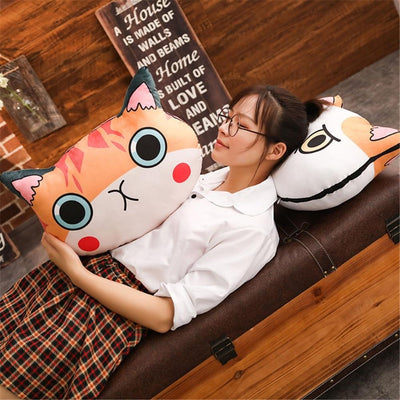 Silly Cat Face Pillows