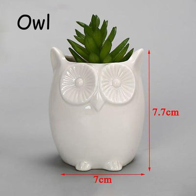 Cute Animal Flower Pots