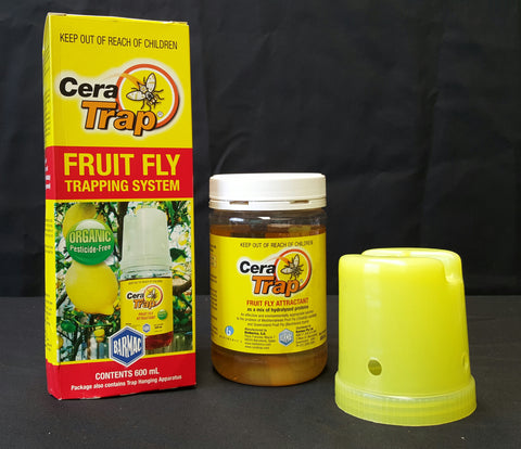 Cera fruit fly trap 600 ml