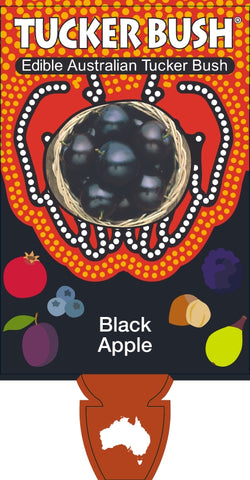 Black Apple 175mm pot