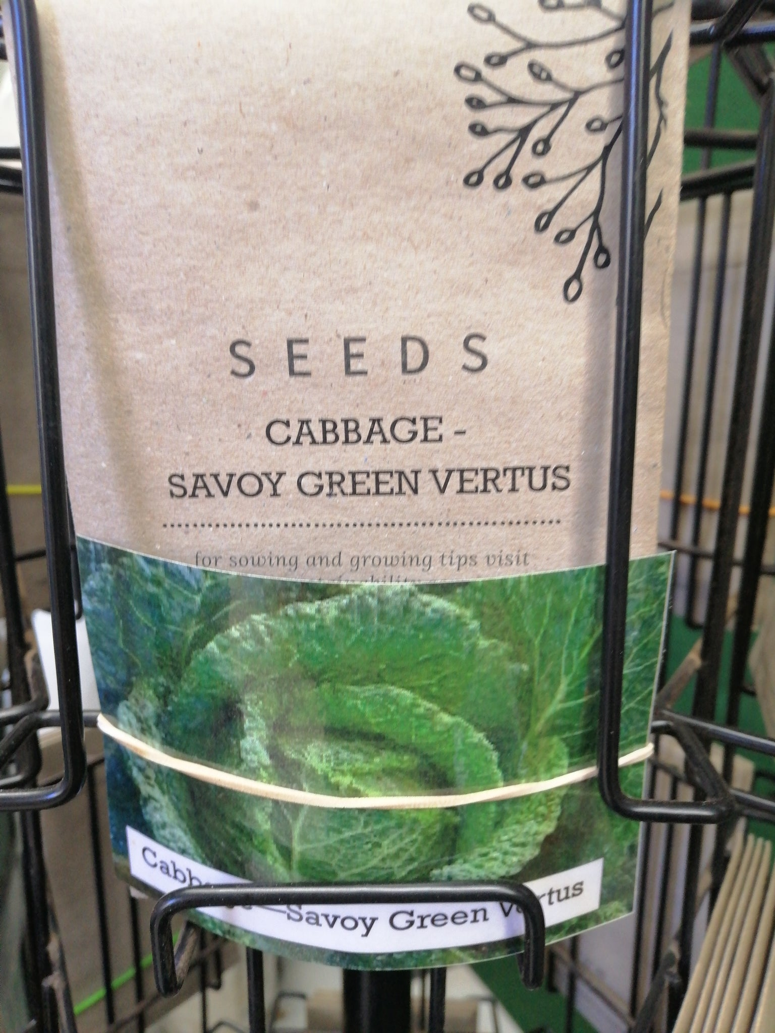 Cabbage - Green Savoy vertus