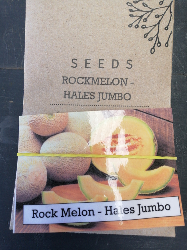 Rock melon - Hales Jumbo seed packet